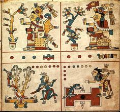 A page from the Codex Fejérváry-Mayer, ca. 15th century CE The codex is a pre-Columbian Aztec divinatory composition, made from 3.85 metres of deer skin parchment, and one of the few to have survived the Spanish conquest. It deals with aspects of the Mesoamerican 260 day calendar, the tonalpohualli. FAMSI.org