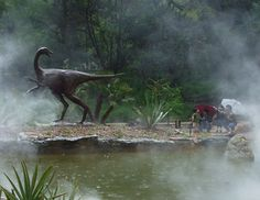 Visit the Zilker Botanical Garden in Austin Texas to see where dinosaurs roamed.In 1992, amateur paleontologists discovered dinosaurs once roamed the grounds of Zilker Botanical Garden. More than 100 tracks made by six or seven reptiles along with the bones of an ancient turtle were found. The site has been developed as a Cretaceous habitat. Plants in the garden represent the types that existed at the time of the dinosaurs.