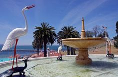 Eastern Beach Fountain by L4leather ....on the road again, via Flickr