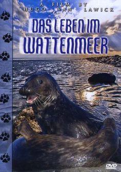 Das Leben im Wattenmeer M.I.B. - Medienvertrieb in Buchholz http://www.amazon.de/dp/B000EZ8PPI/ref=cm_sw_r_pi_dp_P-3Uub08AJ09R
