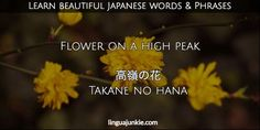 For Learners: 50 Beautiful Japanese Words & Phrases Pt. 7 Japanese Quotes, Japanese Phrases, Beautiful Japanese Words, Writing Humor, Japanese Language, Cool Words, Inspirational Quotes, Feelings, Learning