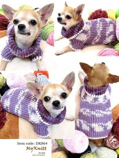 Chihuahua Puppies Purple Best Sweater DK864