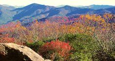 Fall Color Photos & Videos 2012, Asheville North Carolina