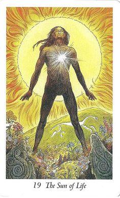 Xem Lá 19. The Sun of Life - Wildwood Tarot bài tarot