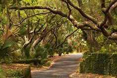Seabrook Island is a welcoming oceanfront community just miles from historic Charleston, South Carolina. Visit our website to find out more about the beautiful Seabrook Island. The Places Youll Go, Great Places, Places To See, Beautiful Places, Vacation Destinations, Dream Vacations, Vacation Spots, Seabrook Island South Carolina, Romantic Beach Getaways