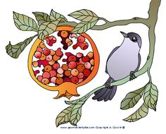 perfectly timed pomegranate clip art