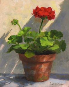 """Sunlit Geranium"" - Original Fine Art for Sale - © Linda Jacobus"