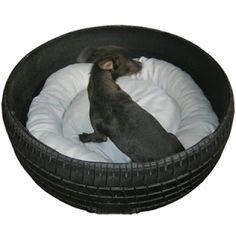 Neumático convertido en el lugar de reposo para tu mascota.