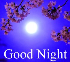 Good Night Images with flowers and nature - PIX Trends Sweet Good Night Images, Sweet Dreams Images, Good Night To You, Photos Of Good Night, Romantic Good Night, Cute Good Night, Good Night Sweet Dreams, Good Night Moon, Good Morning Images