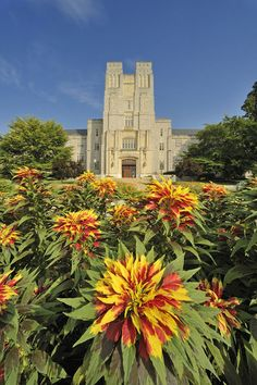 Burruss Hall, Virginia Tech
