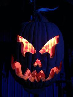 PUMPKINROT.COM: What's Brewing: pumpkins