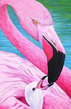 Mother Flamingo Feeding Her Baby Flamingo Painting, Flamingo Art, Pink Flamingos, Animals And Pets, Baby Animals, Cute Animals, Pretty Birds, Beautiful Birds, Aigle Animal