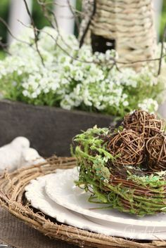 party - Easter and Spring Party - moss bird nest