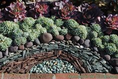 Great combination of succulents and rock designs.