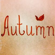 """A year-round celebration of the seasons. """"To be interested in the changing seasons is a happier state of mind than to be hopelessly in love with spring. Mabon, Samhain, Autumn Day, Autumn Home, Autumn Leaves, Autumn Garden, Fall Winter, Yule, Haus Am See"""