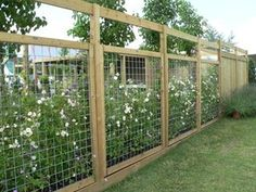 Fence Ideas                                                                                                                                                                                 More