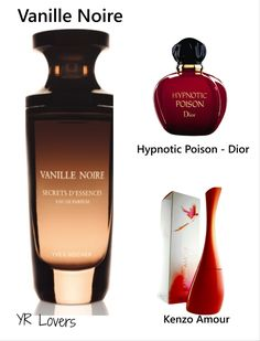 Zara Fragrance, Cosmetics & Fragrance, Perfume Scents, Perfume Bottles, Hypnotic Poison Dior, Parfum Yves Rocher, Kenzo, Beautiful Perfume, Beauty Dupes