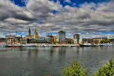 Valdivia y sus rios navegables San Francisco Skyline, Chile, New York Skyline, Travel, Cute, Culture, Trips, Chili Powder, Traveling