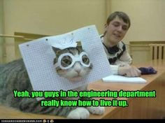 This and a bottle of Mountain Dew from the vending machine and you are ready to PAR-TAY. Lol cats. Engineers. Nerds. Nerdy.