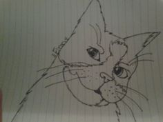 Just ask for me to draw any warrior cat or i can draw your cat if you send me a picture Warrior Cat Drawings, Draw Your, Cats, Gatos, Cat, Kitty, Kitty Cats
