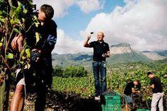Prof. Karl Popp in seinem Weinberg auf Mallorca bei der Verkostung des neuesten Tropfens