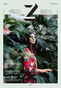 cover of Z Magazine - photographic leaves + flat colour = very niceeee
