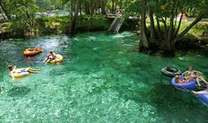 Ginnie Springs - Scuba, Cave Diving and Snorkeling Ginnie Springs