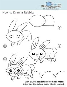 draw rabbit drawing drawings easy cartoon dibujar bunny aprendemos warm lessons rabit tadpole disegnare come easter zeichnen coniglio painting ups