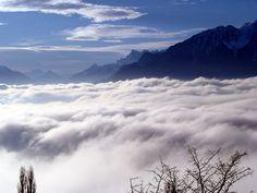 Mer de brouillard sur le lac Léman Geneva, Enchanted, Photos, France, Album, Mountains, Nature, Travel, Lake Geneva