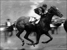 Man O' War, legendary race horse. 1917-1947. During his career he lost just one race, coming in second! Produced over 64 stakes winners and 200 champions, including War Admiral and offspring Seabiscuit. He lay at rest at Kentucky Horse Park under an erected monument in his name.