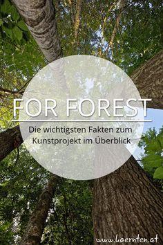"""Hast du schon vom Projekt """"For Forest"""" gehört? Es ist das größte Kunstprojekt Österreichs im öffentlichen Raum und soll für die Themen Wald, Ökologie, Kunst, Natur und Künstlichkeit sensibilisieren. Hier wird das Wörthersee Stadion in Klagenfurt mit 200 Bäumen in ein Gesamtkunstwerk verwandelt. 2 Monate lang kann man das Kunstprojekt in Kärnten besichtigen. Finde hier die wichtigsten Fakten im Überblick! #forforest #kunst #kultur #kärnten #wörtherseestadion #kunstprojekt Klagenfurt, Klopeiner See, Plants, Villach, Ski Trips, Art Projects, Plant, Planets"""