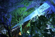 Drapery stretched across the trees in the grounds, with up-lighting to the trees #summerparty http://www.collection26.com/events/services/private-events/