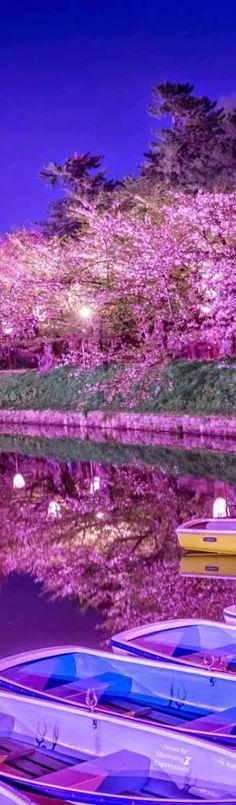 Hirosaki Park   Japan