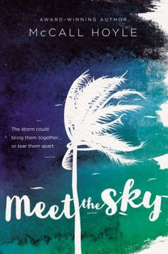 Buy Meet the Sky by McCall Hoyle at Mighty Ape NZ. From award-winning author McCall Hoyle comes a new young adult novel, Meet the Sky, a story of love, letting go, and the unstoppable power of nature. Ya Books, Good Books, Library Books, Mom And Sister, Books For Teens, Book Nerd, Love Book, Author, Meet