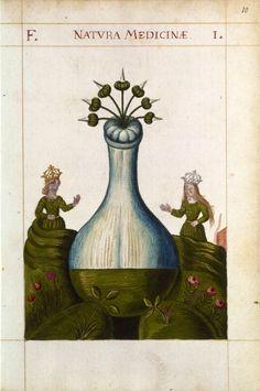 Natura medicinæ (Alchimie) XVIIe siècle. Manuscrit à peintures, papier, 72 folios, 16,9 x 10,9 cm BnF, Arsenal, MS 975, fol. 10, planche 1
