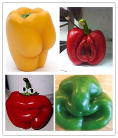 U got the cutest little pepper. Weird Fruit, Funny Fruit, Strange Fruit, Fruit And Veg, Fruits And Vegetables, Things With Faces, Funny Vegetables, Weird Shapes, Bizarre