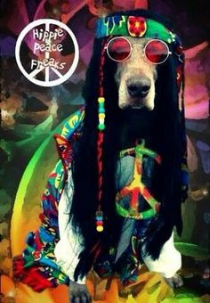 I give you Peace Dog. Be cool. Be kind. Be loved. Enjoy RushWorld boards,  MOOD BUSTERS,  BARK RUFFINGTON'S DOG KINGDOM, UNPREDICTABLE WOMEN HAUTE COUTURE and ART A QUIRKY SPOT TO FIND YOURSELF.  See you at RushWorld on Pinterest! New content daily, always something you'll love!