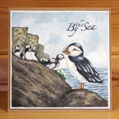 This is the gorgeous new Foam Mounted Puffin Set. June's Monthly Special for Both stamps are backed onto EZ-mount so will adhere to any acrylic block. Puffin scene - x approx, Puffin Standing- x approx. Card by Sally Dodger Sea Theme, Art Cards, Cat Crafts, My Stamp, Homemade Cards, Projects To Try, Greeting Cards, Scene, Big Project