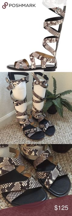 MICHAEL Michael Kors Darby Tall Gladiator Sandals MICHAEL Michael Kors Darby Tall Gladiator Sandals Leather Snakeskin Brown   Size 9M  NEW Without box MICHAEL Michael Kors Shoes Sandals