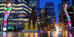 14 photos of the Vancouver Christmas Tree lighting 2015 Christmas Lights, Christmas Tree, City Scene, Tree Lighting, Holiday Traditions, Photography Photos, British Columbia, Vancouver, Cool Photos