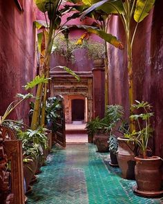 "5,332 Likes, 59 Comments - House & Garden (@houseandgardenuk) on Instagram: ""Drama is created in a simple linking passageway at Riad Madani with a brooding shade of magenta…"""