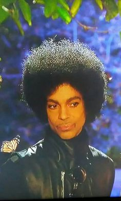 Prince & his butterfly analogy of love on new girl show.