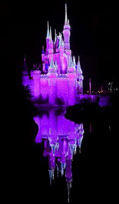Cinderella's Castle reflection
