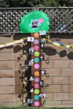 @Jeane Farrell - Cute way to display photos of each month of baby's 1st year doing this for baby girls birthday:)