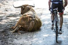 21-08-2015 MASERATI - bike-event Arnhem - Veenendaal photo: Wouter Roosenboom (wouterroosenboom.nl / procycleshots.com)
