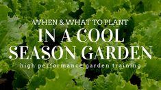 How to Plant a Cool Season Garden