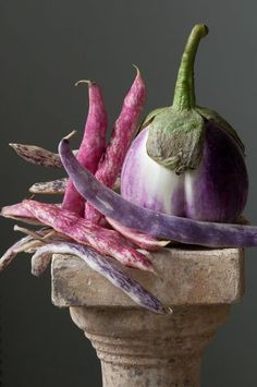 """Lynn Karlin's """"Calliope: Eggplant With Beans"""" features a Rosa Bianca eggplant, Tongue of Fire (red) beans and Dragon Tongue (purple) beans. ..."""