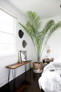 cozy neutral bedroom with a huge potted plant in a basket and gray and white bedding