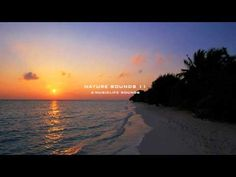Nature Sound 11 - THE MOST RELAXING SOUNDS -