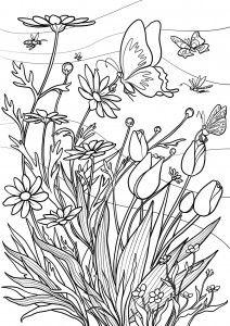 Kleuren voor volwassenen lente nieuw pinterest - Coloriage du printemps ...